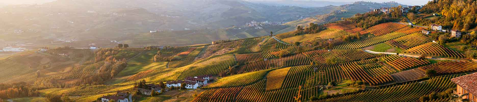 weinanbaugebiet piemont liemonte Italspezialitäten